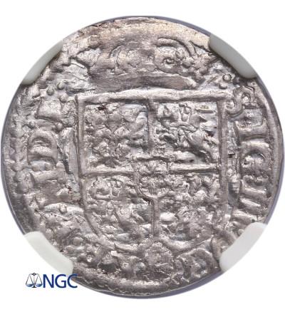 Polska. Półtorak 1619, Wilno, Zygmunt III Waza -  NGC MS 61