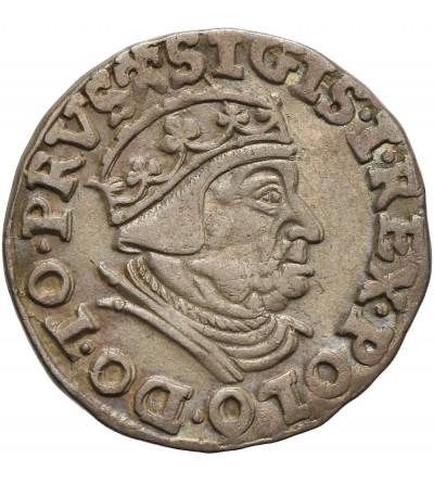 Zygmunt I Stary 1506-1548. Trojak (3 grosze) 1539, mennica Gdańsk