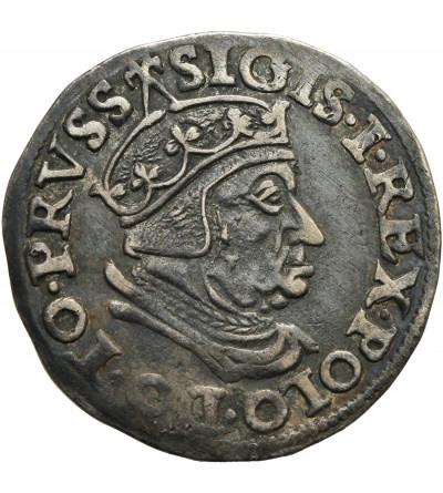 Zygmunt I Stary 1506-1548. Trojak (3 grosze) 1538, mennica Gdańsk.