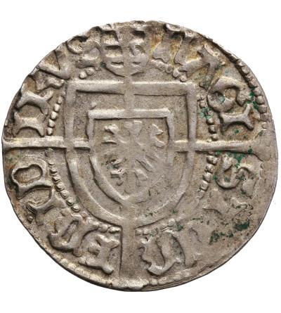 Zakon Krzyżacki. Fryderyk Saski 1498–1510. Grosz bez daty, Królewiec