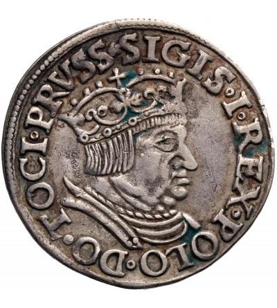 Zygmunt I Stary 1506-1548. Trojak (3 grosze) 1536, mennica Gdańsk