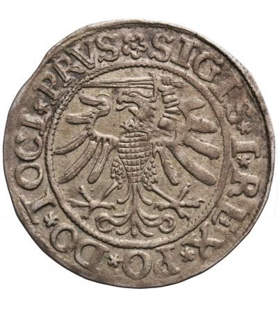 Polska. Grosz 1533, Elbląg. Zygmutn I Stary 1506-1548