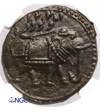 India - Mysore AE Paisa AM 1221 / 1792 AD, Pattan, Tipu Sultan - NGC MS 62 BN