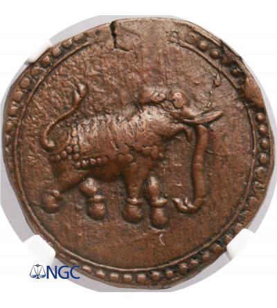 Indie - Mysore AE Paisa bez daty (1782-1799), Patan, Tipu Sultan - NGC MS 61 BN