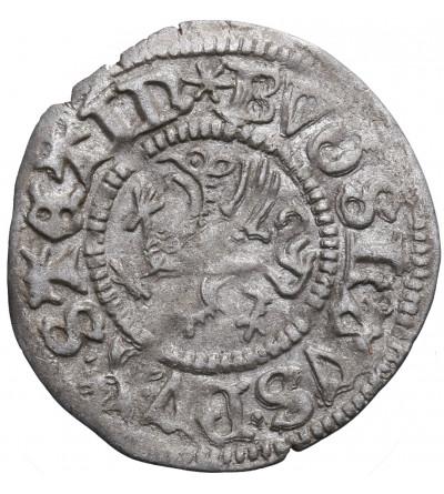 Pomorze, Bogusław X 1478-1523. Wit (Witten) MVC (1500), Szczecin