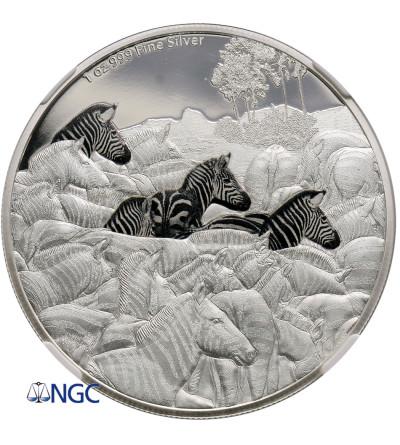 Niue 2 dolary 2016, wielkie migracje - zebra (1 Oz Ag 9999) - NGC PF 69 Ultra Cameo