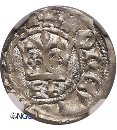 Polska. Władysław Jagiełło 1386–1434. Półgrosz bez daty (1412-1414), Kraków - NGC MS 64