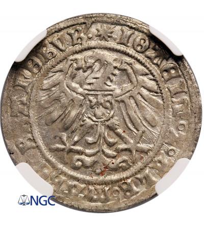 Śląsk. Księstwo krośnieńskie. Joachim I i Albrecht 1499–1513. Grosz 1512, Krosno Odrzańskie - NGC MS 62