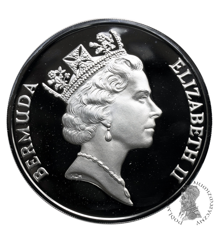 Bermudy 5 dolarów 1987, Sea Venture wrak