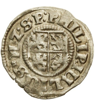 Pomorze. Grosz 1611, Nowopole