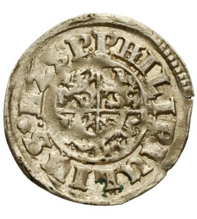 Pomorze. Grosz 1612, Nowopole